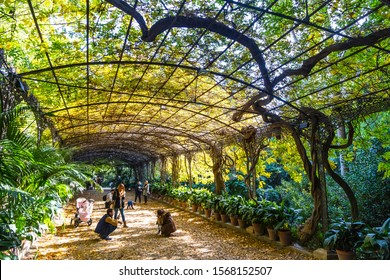 Malaga, Spain - December 10, 2017: Botanical Garden (Jardin Botanico La Concepcion) in Malaga. One of the few gardens with subtropical climate plants that exist in Europe. Garden created in 1855