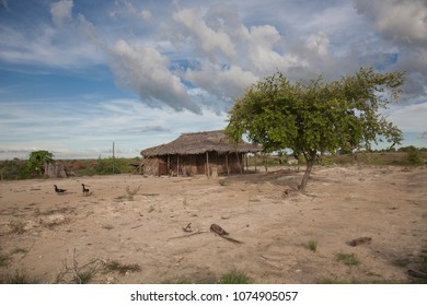 Malagasy house in the poor village, yard with poultry fowl, goose. The tree at home, blue sky and clouds.