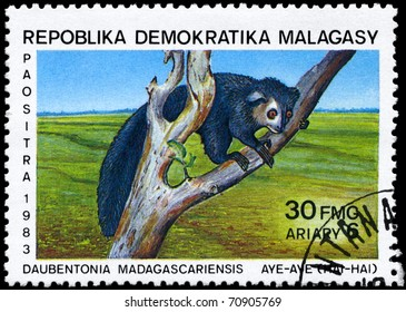 "MALAGASY REPUBLIC - CIRCA 1983: A Stamp printed in MALAGASY REPUBLIC shows image of a Aye-aye with the description ""Daubentonia madagascariensis"" from the series ""Various Lemurs"", circa 1983"