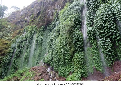 Malang, East Java, Indonesia - Maret, 2018:  View of Sumber Pitu Waterfall located in Pujon, Malang Regency, East Java, Indonesia.