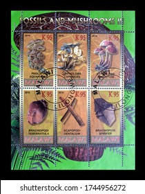 MALAWI - CIRCA 2010 : Block of cancelled postage stamps printed by Malawi,that shows Fossils and mushrooms, circa 2010.