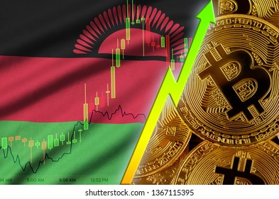 Malawi flag and cryptocurrency growing trend with many golden bitcoins