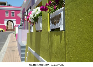 Malay Quarter, Bo-Kaap, Cape Town, South Africa. Historical area of brightly painted houses in the city centre, housing largely Muslim families.