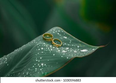 The Malay Wedding in Malaysia