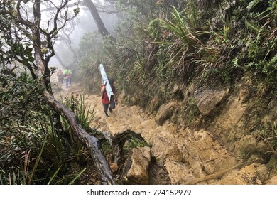 Malaysia : May 2017, Workers carrying materials for construction go to the campsite at mount Kinabalu national park.