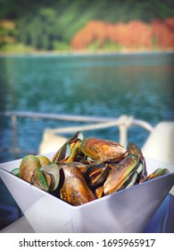 Malborough seafood cruise, a bowl of fresh mussel from the sea, New Zealand