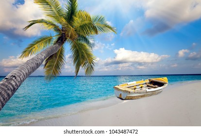Maldives. The boat on the sandy beach and a palm tree over water