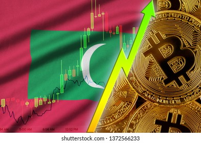 Maldives flag and cryptocurrency growing trend with many golden bitcoins