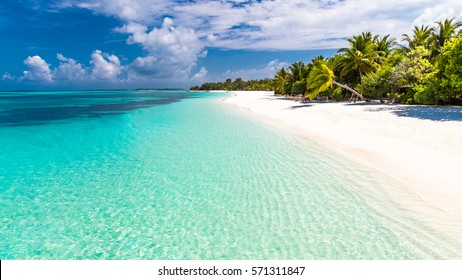 Maldives perfect paradise beach tropical island background beautiful palm trees beach landscape mood blue sky clouds blue sea luxury travel summer holiday concept website design sun zen inspirational