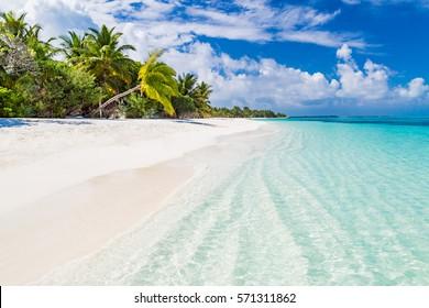 Maldives perfect paradise beach tropical island background beautiful palm trees beach landscape mood blue sky clouds blue sea luxury travel summer holiday concept website design sun zen inspirational
