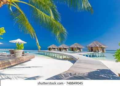 Maldives wooden bungalows with crystal turquoise water on tropical island with coconut palms. Blue sea and relaxing mood
