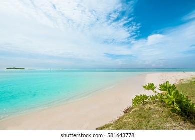 Maldivian tropical white sandy beach with turquoise water, blue sky, copy space