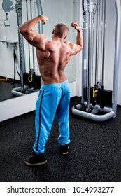 Male athlete views his biceps in a front double biceps pose in a mirror in a gym. Back view.