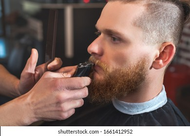 A male barber at work, he does a beard and mustache haircut to a man in the barbershop. Male cosmetology, care of the beard, creating a stylish look.