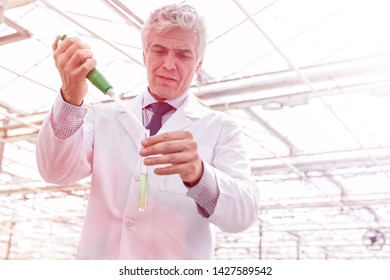 Male biochemist pouring chemical in test tube with pipette in plant nursery