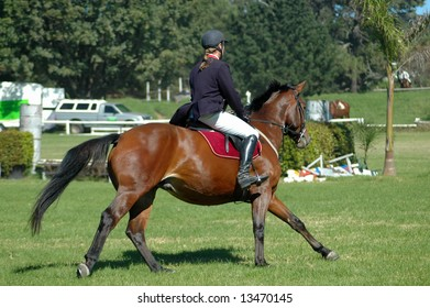 A male caucasian horse rider with ponytail riding her beautiful brown horse at the riding school outdoors