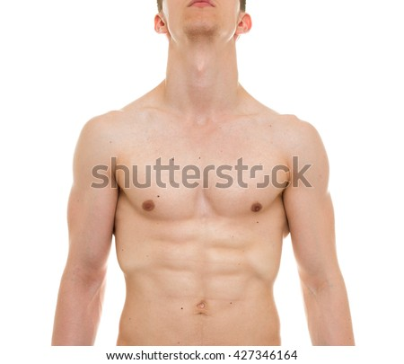 Male Chest Anatomy Man Muscles Front Stock Photo Edit Now