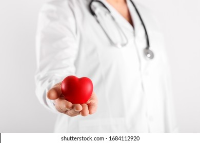 Male doctor holding heart in hands symbol of health
