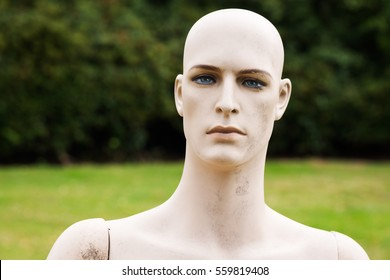 Male dummy with bare-faced striking head
