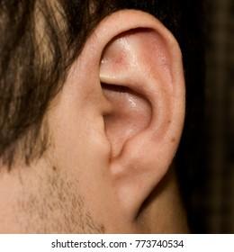 Male ear. Adherent earlobe close-up. Square photo.