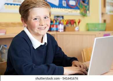 Male Elementary School Pupil Using Laptop In Computer Class