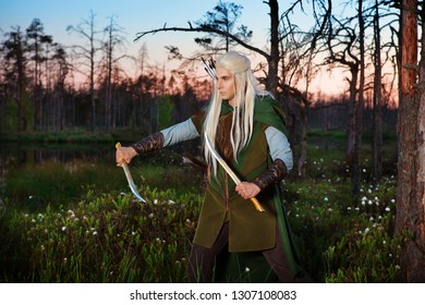 male elf warrior with two daggers in natural environment