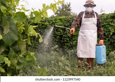 Sprayer Images Stock Photos Amp Vectors Shutterstock