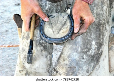 Male farrier working on a horseshoe on the ranch.