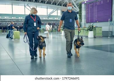 Männliche und weibliche Offiziere in medizinischen Masken, die mit deutschen Schäferhunden die Flughafenhalle herunterrollten