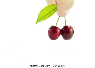 Male fingers holding cherries on white background