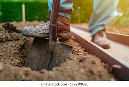 Male foot wearing a rubber boot digging an earth in the garden with an old spade close up. Soil preparing for planting in spring. Agriculture and people concept