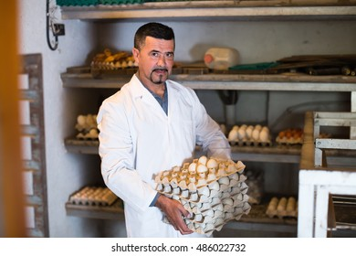 Male fowl-farm worker packing fresh eggs into carton indoors