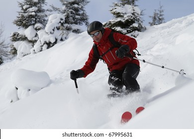 Male freerider is skiing downhill along fir trees