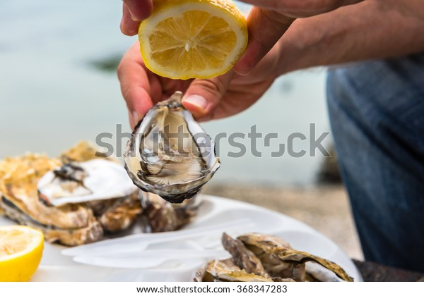 Male hand holding oysters on a plastic plate near the sea
