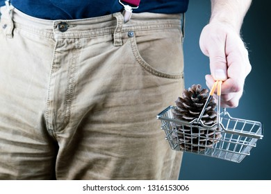 male hand holds before him the basket from the supermarket with forest lump of cedar