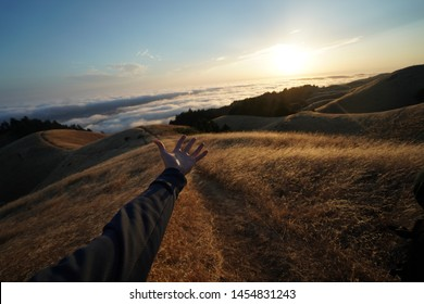 A male hand stretching towards a dry grass field with visible Skyline of the Mt. Tam, CA