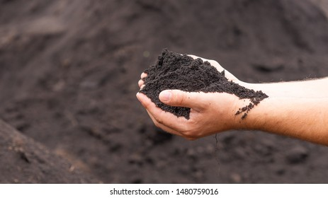 Male hands hold fertile black soil - fertility concept