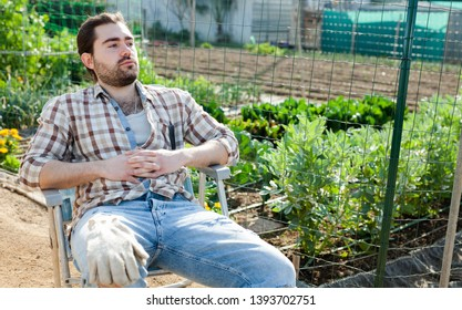 Male horticulturist sitting near greens and vegetables seedlings in  garden outdoor