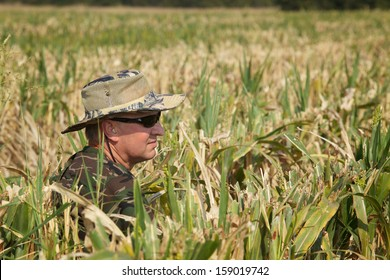 Male hunter waits in cut corn field for doves to fly over.  Dove hunting season begins in September (fall, autumn) in Texas.  Color, horizontal image with room for copy.
