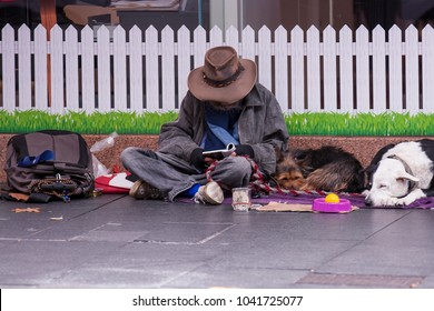 Male isolated homeless wearing a brown hat sitting on the pedestrian footpath reading a book near the white fence along side with his two brawn and white dogs in Sydney city CBD, Sydney, Australia