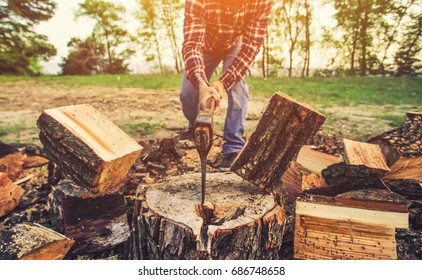 Male Lumberjack in the black-and-red plaid shirt with an ax chopping a tree in the forest.