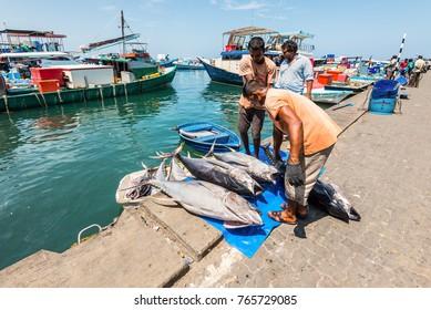 Male, Maldives - November 21, 2017: Area of fresh fish market in Male, Maldives. Men unload large tuna.