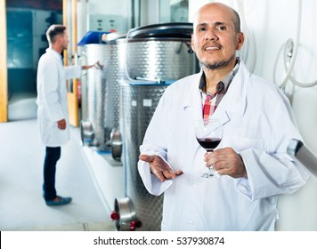 Male mature winemaker in lab coat examining a sample of wine in glass