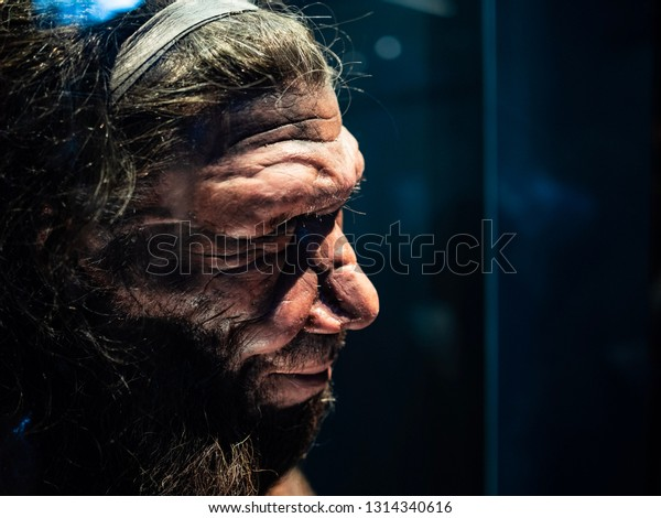 Headshot​ of​ male Neanderthal replicate exhibited in​ Natural​ History​ Museum, London.​ Shot​ on​ 13feb2019.