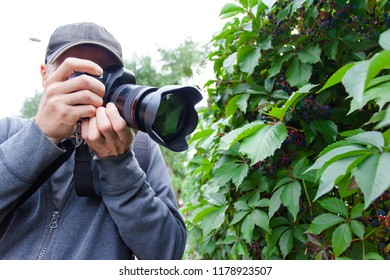 male photographer with a large professional camera looks into the viewfinder and takes pictures of a green plant leaf