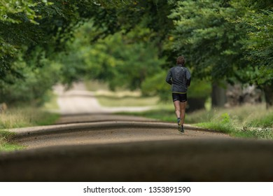 Male Runner in Forest Woodland