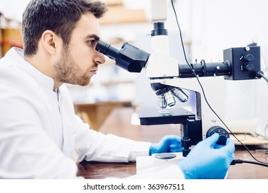 Male scientist, chemist working with microscope in pharmaceutical laboratory, examining samples