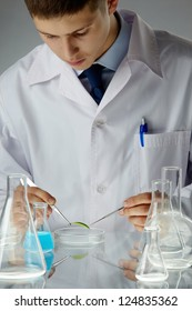 Male scientist studying a biological sample in a Petri dish