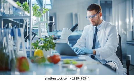 Male Scientist Working on a Laptop Computer, Making Analysis of a Lab-Grown Food with Microscope. Microbiologist Working on Molecule Samples in Modern Laboratory with Technological Equipment.