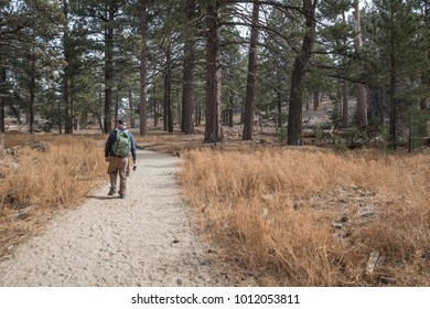 Male senior hiker wearing a backpack and carrying a camera on the trail through Mount San Jacinto State Park in Idyllwild, California